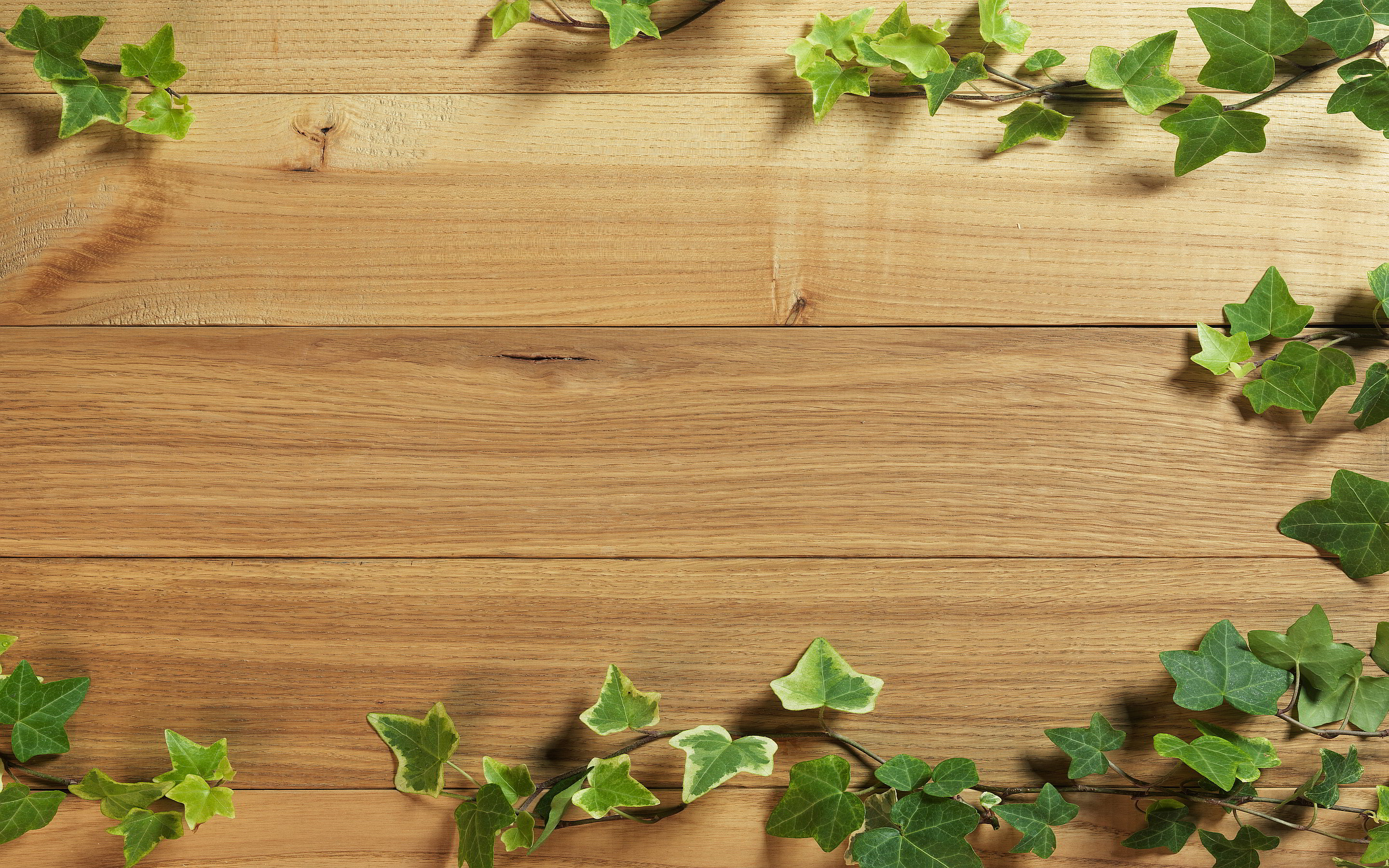 8822407-plant-wood-background